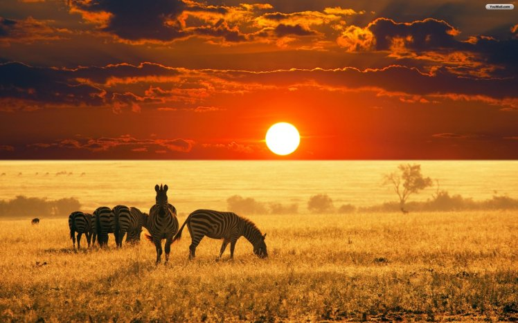 africa_sunset_wallpaper_74171