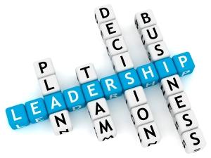 Sem-Pict-Leadership-dices